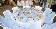 Wedding table decorated with pale colors and olive detail
